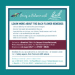 Breakfast Talk on the Bach Flower remedies